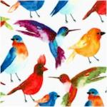 Conservatory by Sarah B - Beautiful Birds (Digital)