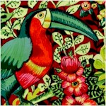 Brazilia - Exotic Jungle Birds and Flowers