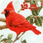 The Cardinal Rule - Beautiful Birds on Branches