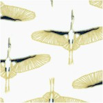 BI-cranes-Y361