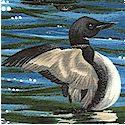 The Last Frontier 2 - Peaceful Ducks