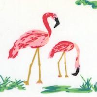 West Palm - Flamingo Field Pearl by Katie Skoog
