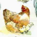Hen House - Hens, Roosters and Chick in the Barnyard