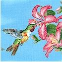BI-hummingbirds-M976