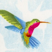 Humming Along - Delicate Hummingbirds on Blue