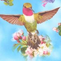 Hummingbird Garden - Gorgeous Birds and Flowers in the Sky