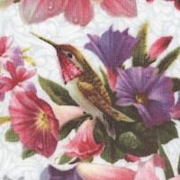 Bi-hummingbirds-R764