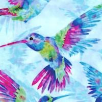 BI-hummingbirds-R776