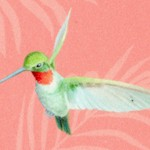 Island Sun - Tossed Hummingbirds on Tropical Peach