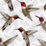 BI-hummingbirds-Y846