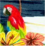 Isla - Beautiful Parrots and Hibiscus #1