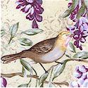 Victorian Lovebirds and Wisteria on Cream