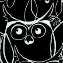 BI-owls-U435