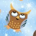 BI-owls-U436