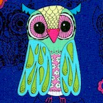 Funky Owls on Blue