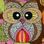 Owl's Nest on Brown