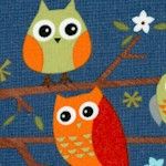 Ten Little Things - Adorable Owls on Blue