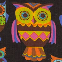 Colorful Owls on Black