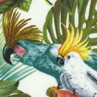 Paradise - Cockatiels and Exotic Birds in a Tropical Garden on Ivory