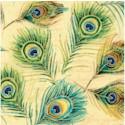 BI-peacock-U571
