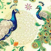 BI-peacocks-R226