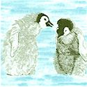 BI-penguins-M425