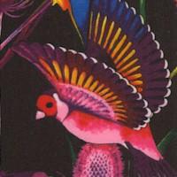 Nicole's Prints - Rainbow Rainforest on Black