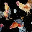 BI-roosters-P894