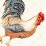 BI-roosters-X49