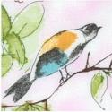 Skylark - Delicate Birds and Flowers on Mottled Pink
