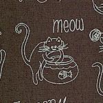 CAT-cats-W715