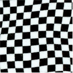 Race Day - Black and White Racing Checkerboard