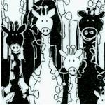 FLA-giraffes-F583