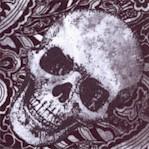Wicked - Tossed Skulls on Paisley