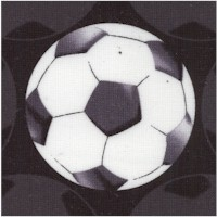 All Stars - Soccer Balls in Black and White by Maria Kalinowski